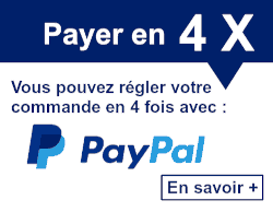 payer paypal 4x